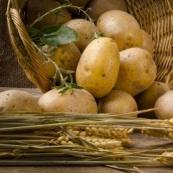 5 необычных блюд из картофеля