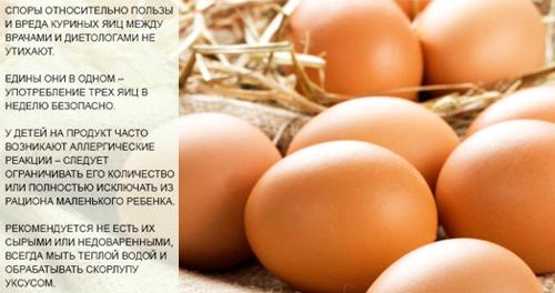 Состав и полезные свойства куриного яйца