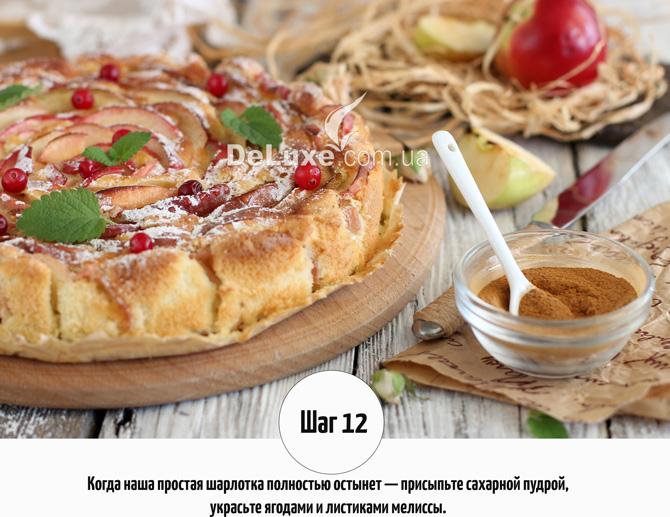 Шарлотка с яблоками и корицей Рецепт Фото 12